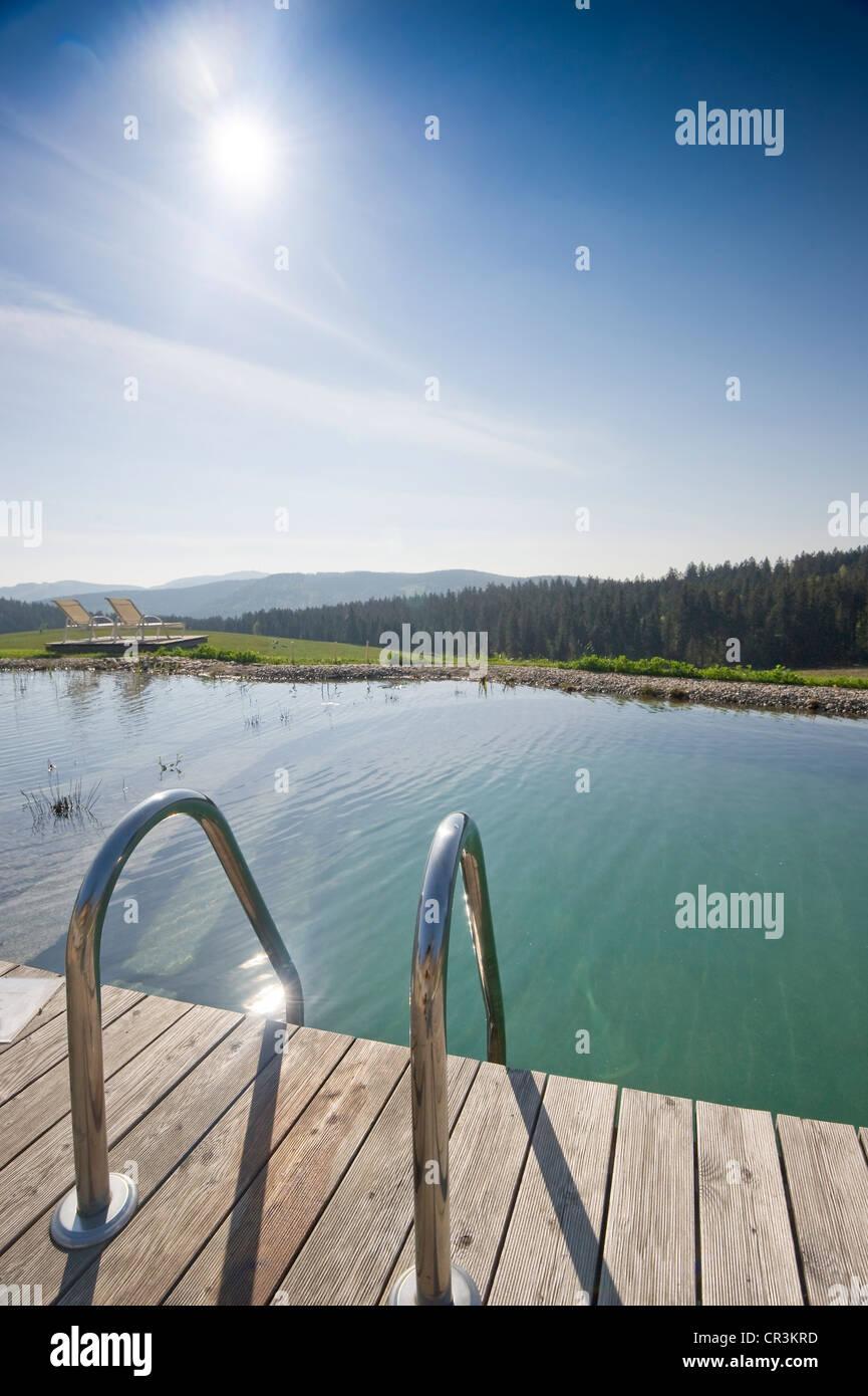 Swimming Pool Of Halde Hotel On Mt Schauinsland, Freiburg Im Breisgau, Black  Forest, Baden Wuerttemberg, Germany, Europe