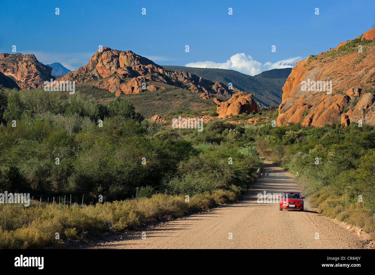 South Africa, Western Cape, Route 62, Garden Route, Little Karoo ...