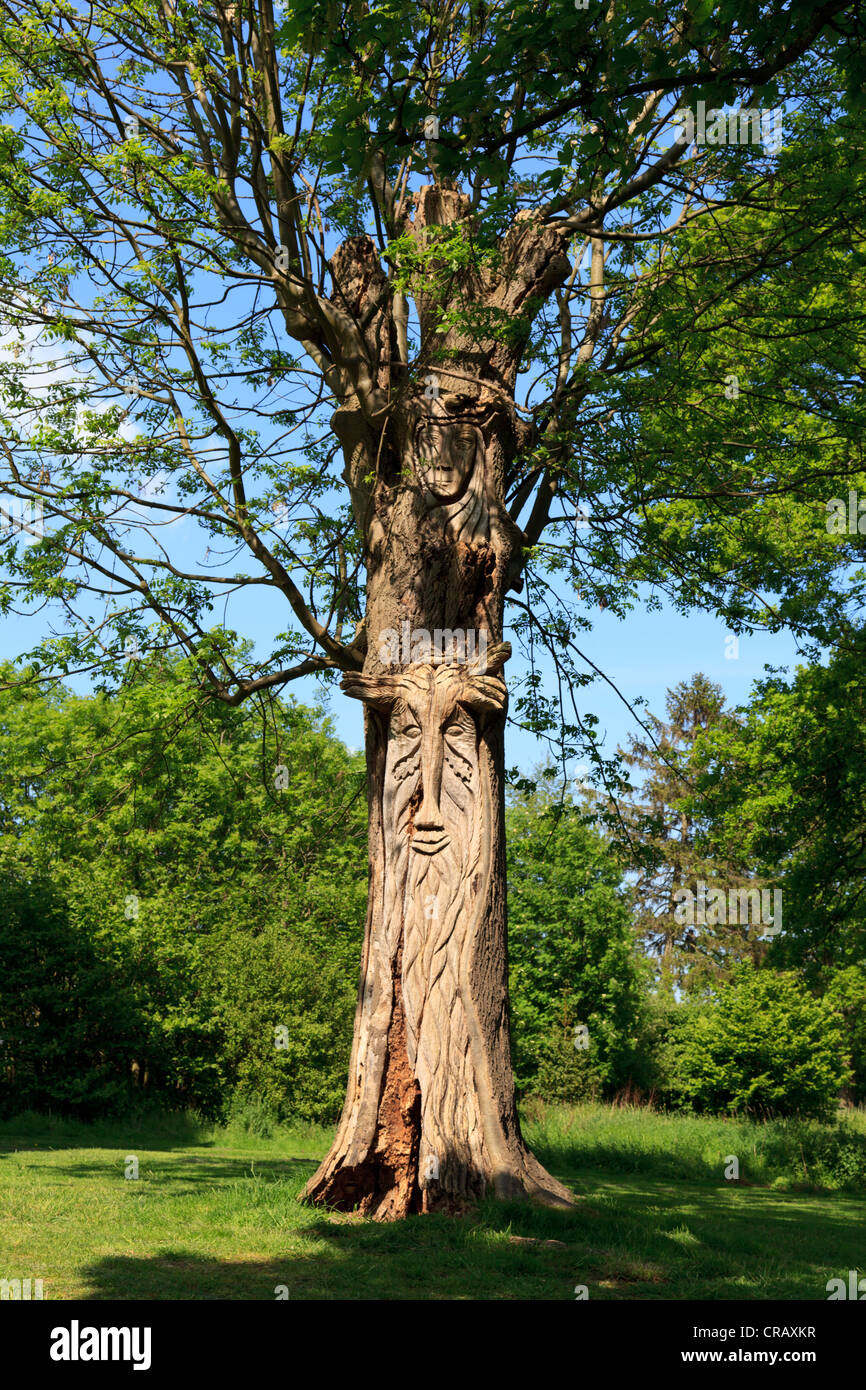 Tree Carving with Mythical Creatures - Stock Image