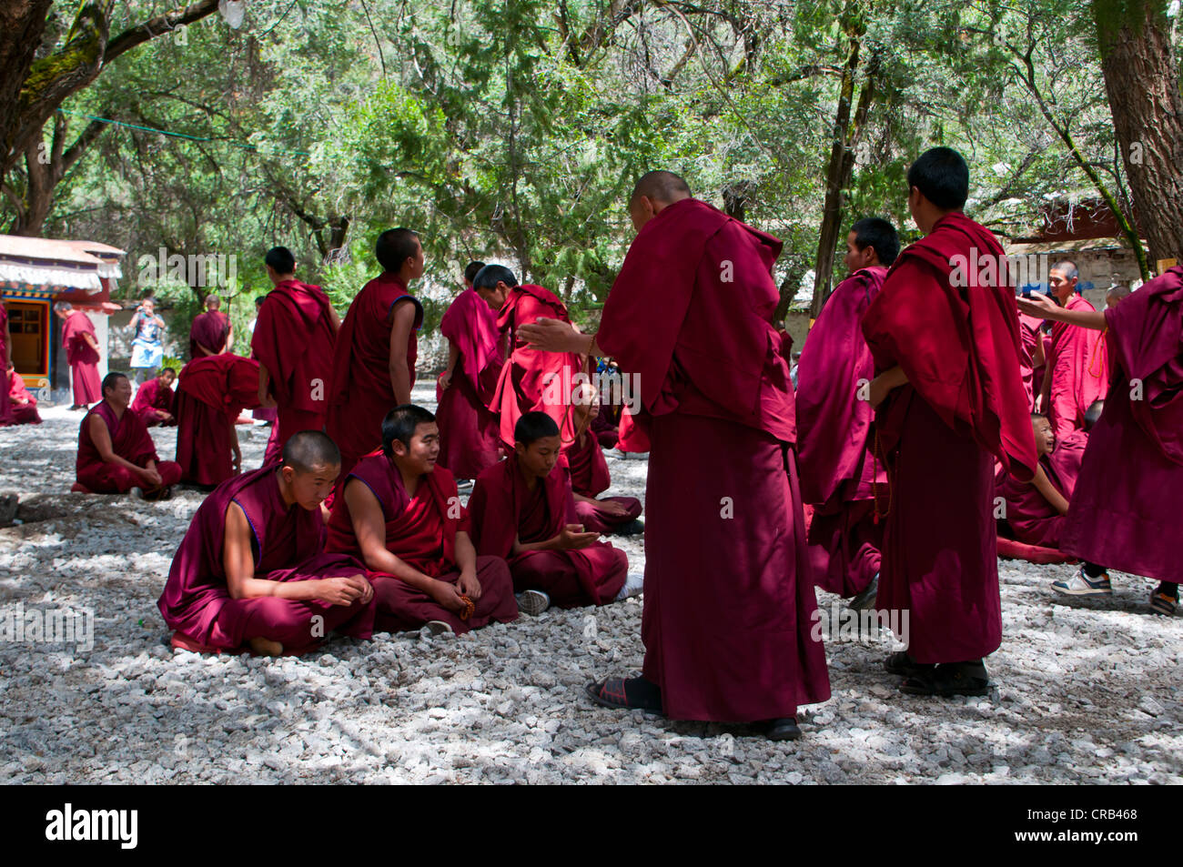 Young monks during their daily discussion round in Saga Temple, Lhasa, Tibet, Asia - Stock Image