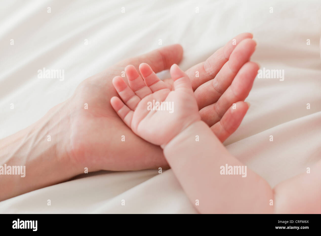 Close up of mother and babys hands - Stock Image