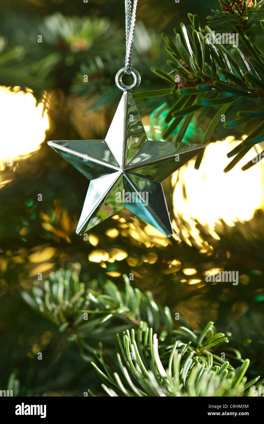 Star shape Christmas ornament, silver shining in color, in fresh ...
