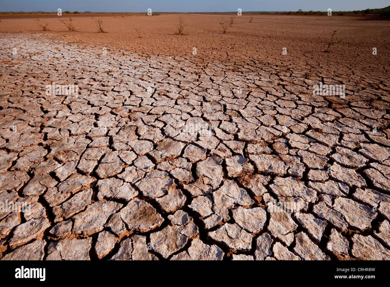 Cracked soil in Sarigua national park (desert), in the Herrera province, Republic of Panama. - Stock Image