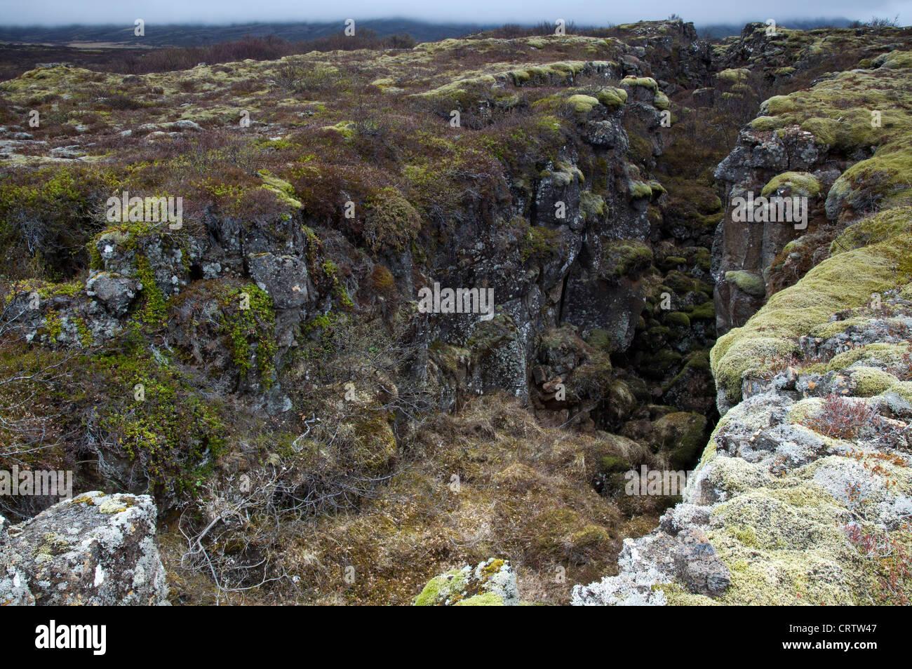 Ridge at Thingvellir, Iceland - Stock Image