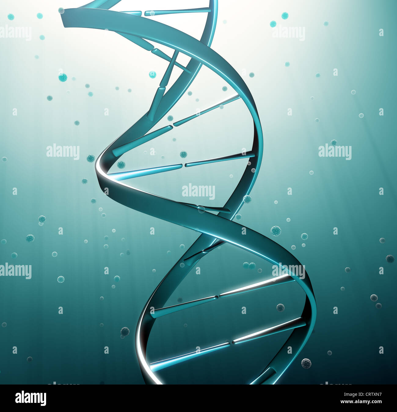 DNA strand iluustration - genetic research - Stock Image