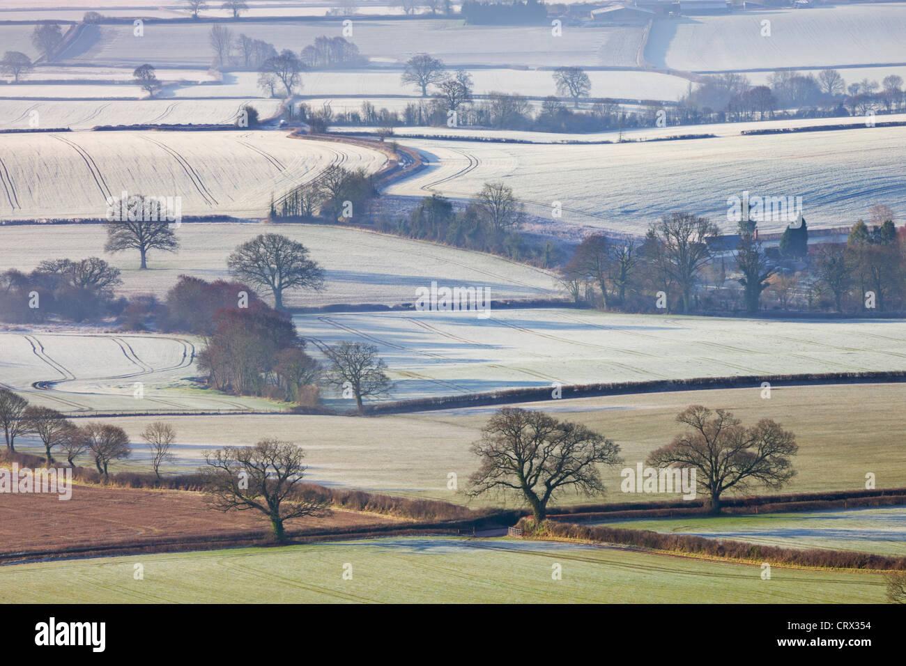 Frosted winter fields near Shobrooke, Devon, England. Winter (March) 2010. - Stock Image