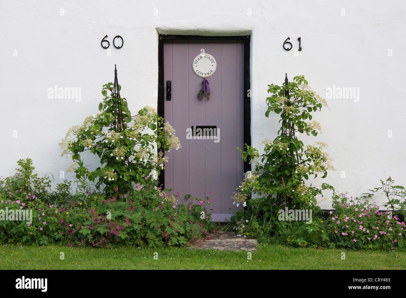 The Lilac Coloured Front Door To Star Gazy Cottage One Of The