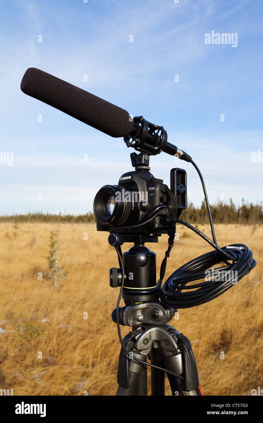 A DSLR camera with video functionality mounted on a tripod with a shotgun microphone. - Stock Image