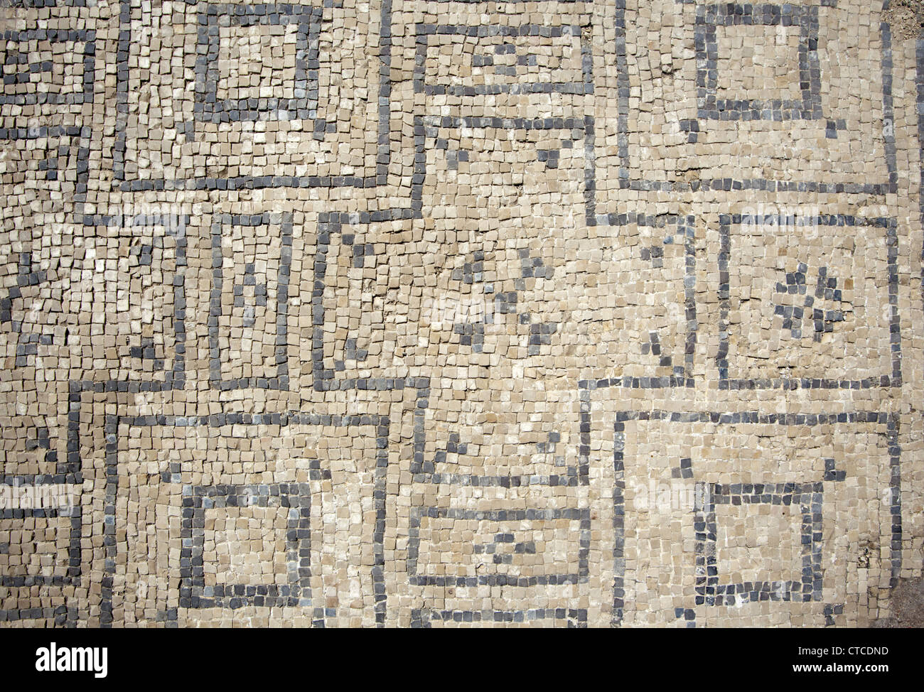 Floor tiles at an ancient roman bath at the archaeological site beit floor tiles at an ancient roman bath at the archaeological site beit shean national park israel dailygadgetfo Image collections