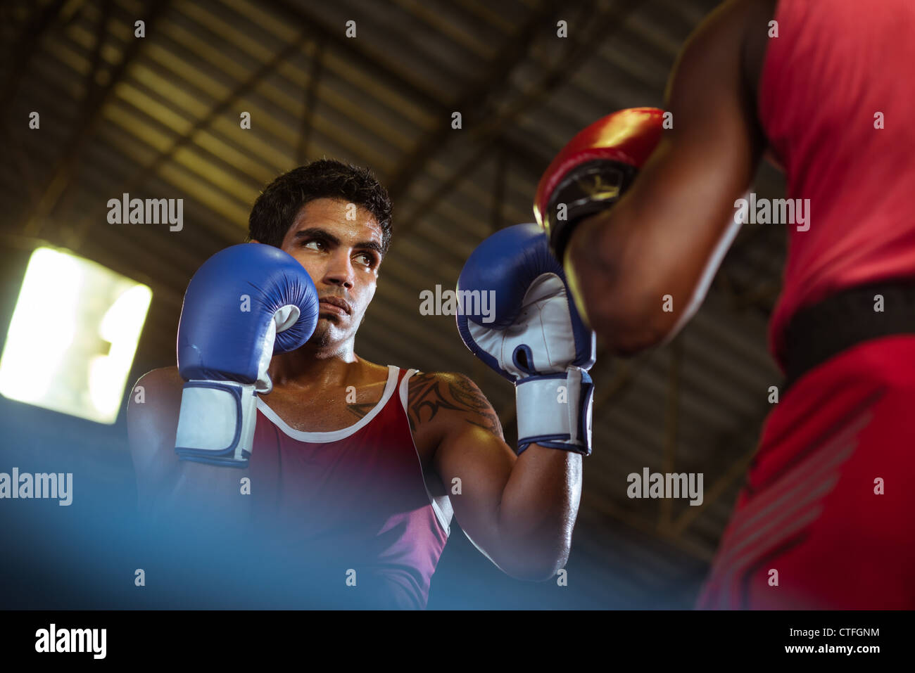 Sport and people, two men exercising and fighting in boxing gym - Stock Image