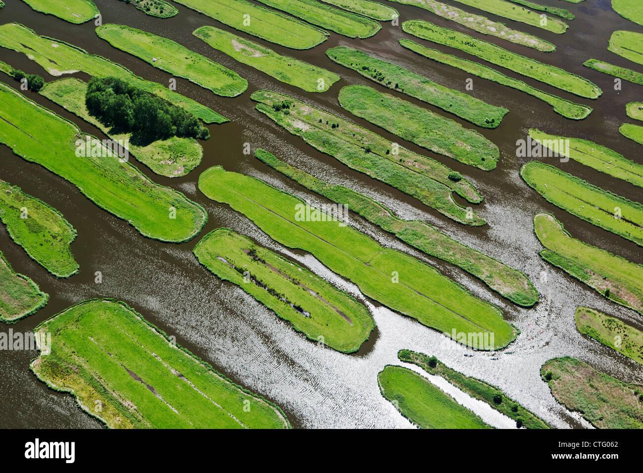 The Netherlands, Jisp, Aerial, Polder landscape. - Stock Image