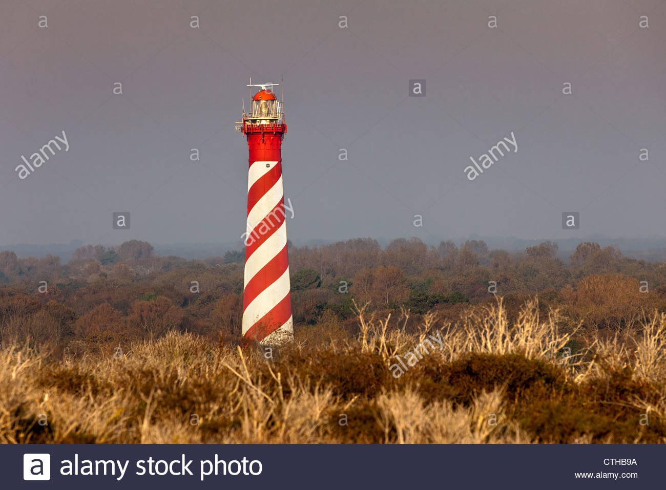 The Netherlands, Burgh Haamstede, Lighthouse. - Stock Image