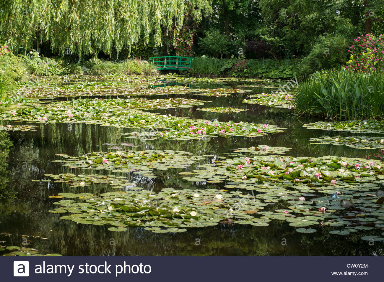 monets-water-garden-at-giverny-CW0Y2M.jpg