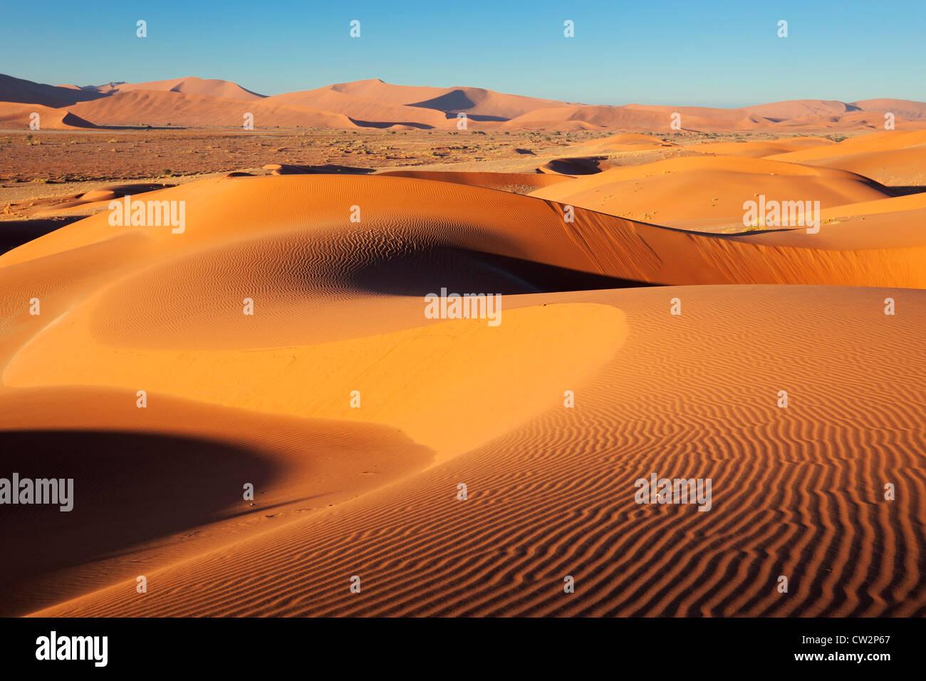 Intricate dune pattern lit up by morning sun. Sossusvlei in the Namib desert. Namib-Naukluft N.P, Namibia - Stock Image