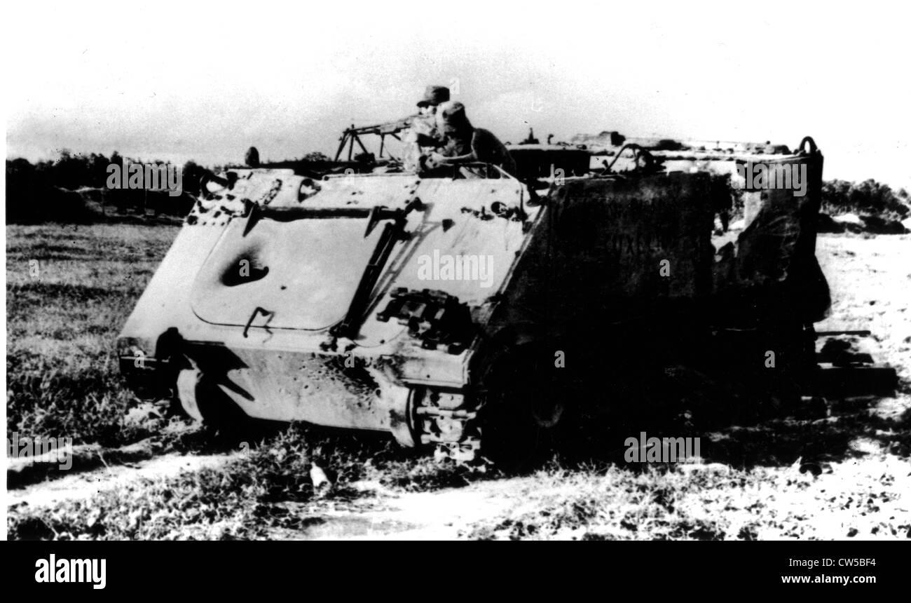 Vietnam War Vs. Greasy Lake War In T.C. Boyle's Short Story