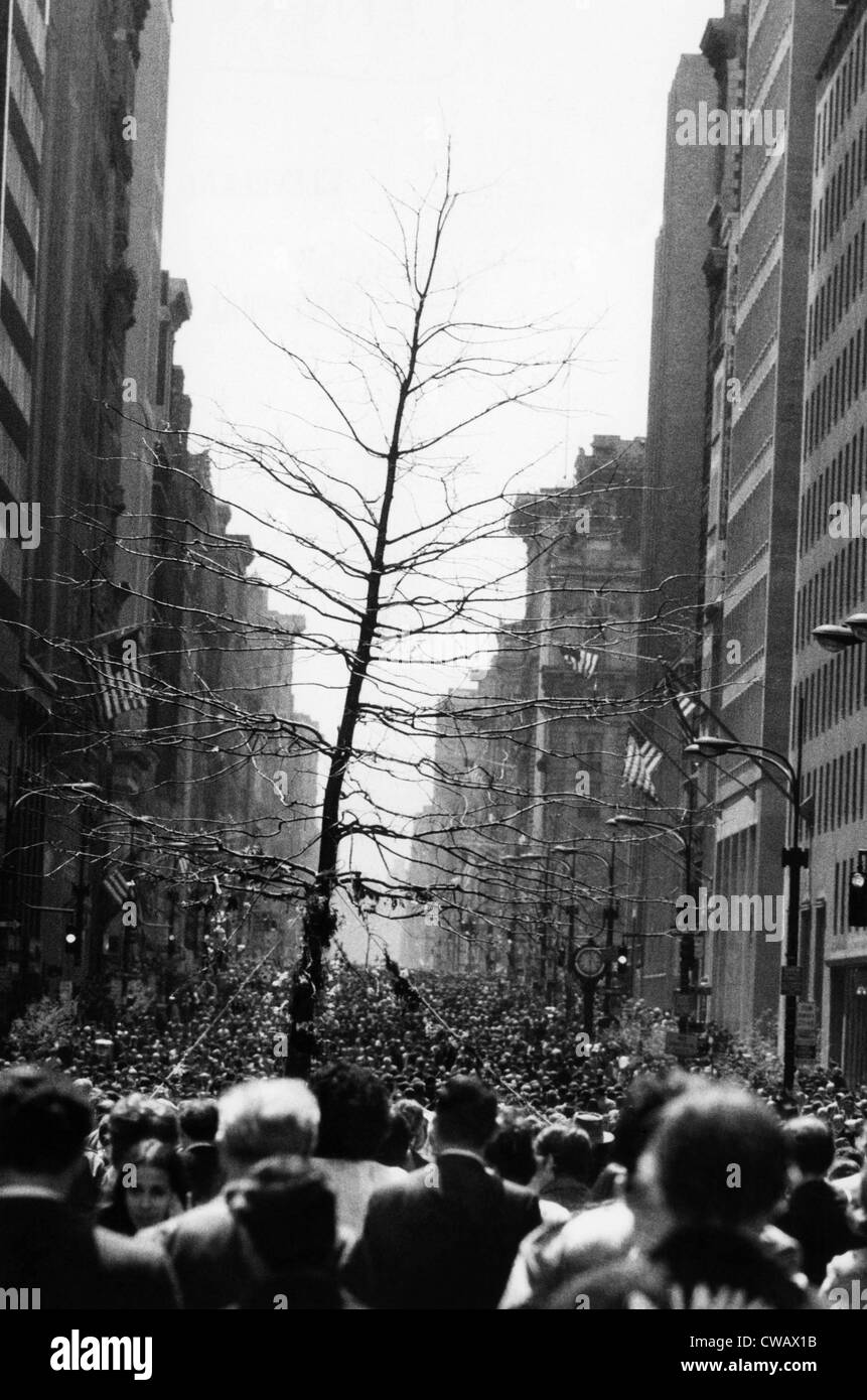 A group of marchers carry a tree on 5th Avenue, as part of Earth Day. New York City, New York. 4/22/70. Courtesy - Stock Image