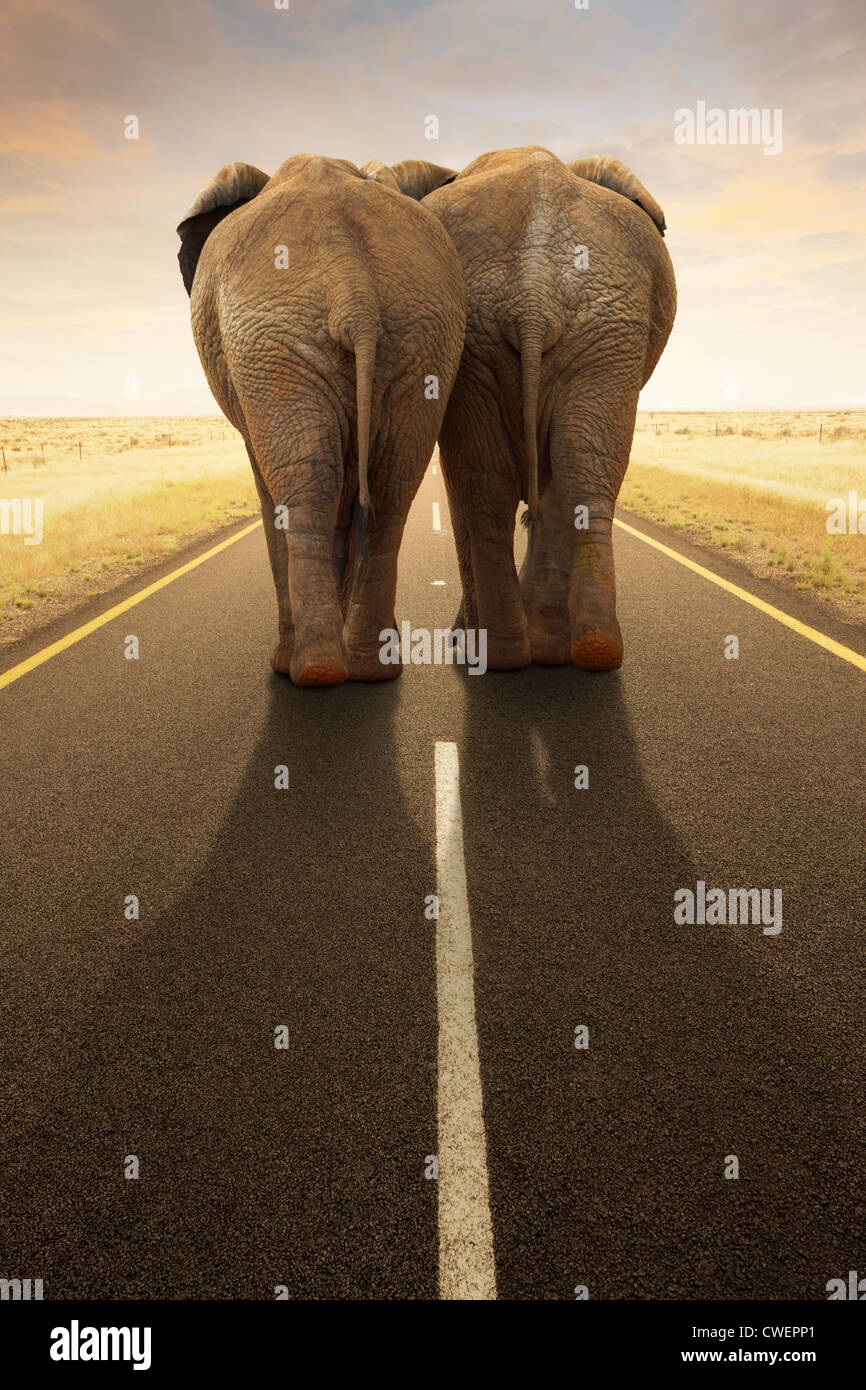 Conceptual Image - Going away together / travel by road (Digital composite) - Stock Image
