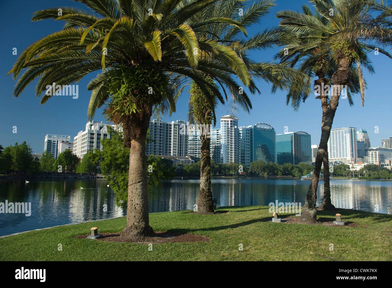PALM TREES DOWNTOWN SKYLINE LAKE EOLA PARK ORLANDO FLORIDA USA - Stock Image