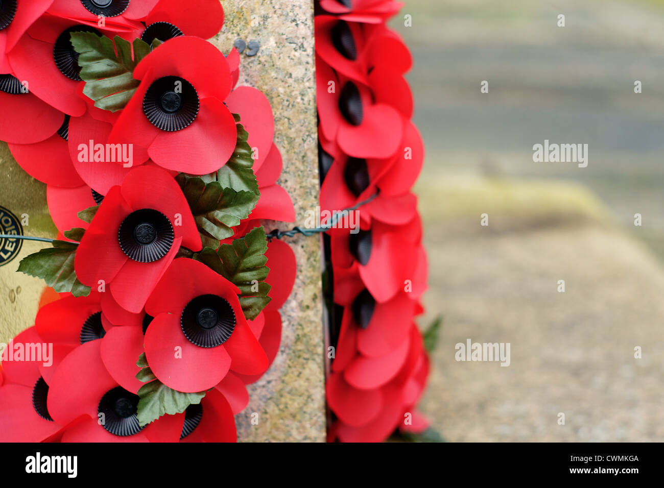 Poppy wreathes on a war memorial to commemorate fallen servicemen in past conflicts Stock Photo