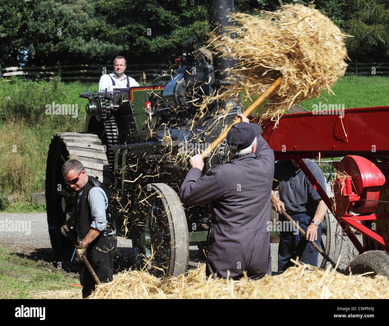 men-loading-hay-into-steam-powered-balin