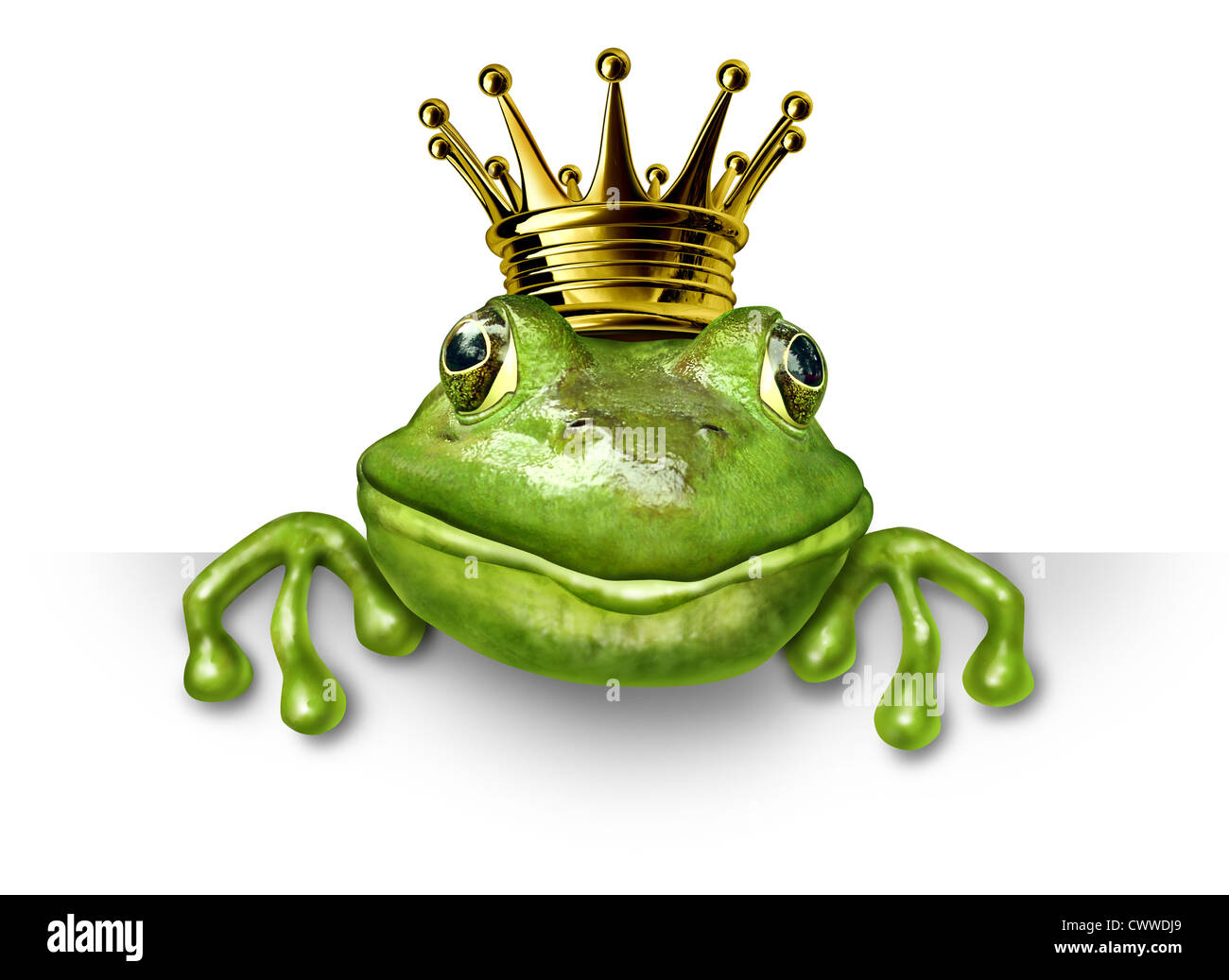 Frog prince with small gold crown holding a blank sign representing the fairy tale concept of change and transformation - Stock Image