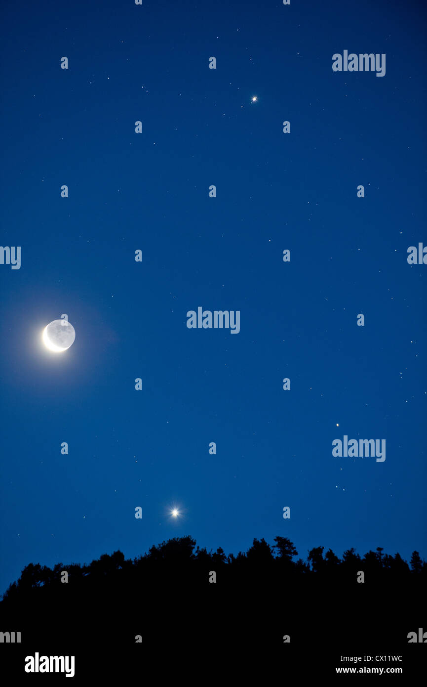 Moon and stars in the sky - Stock Image