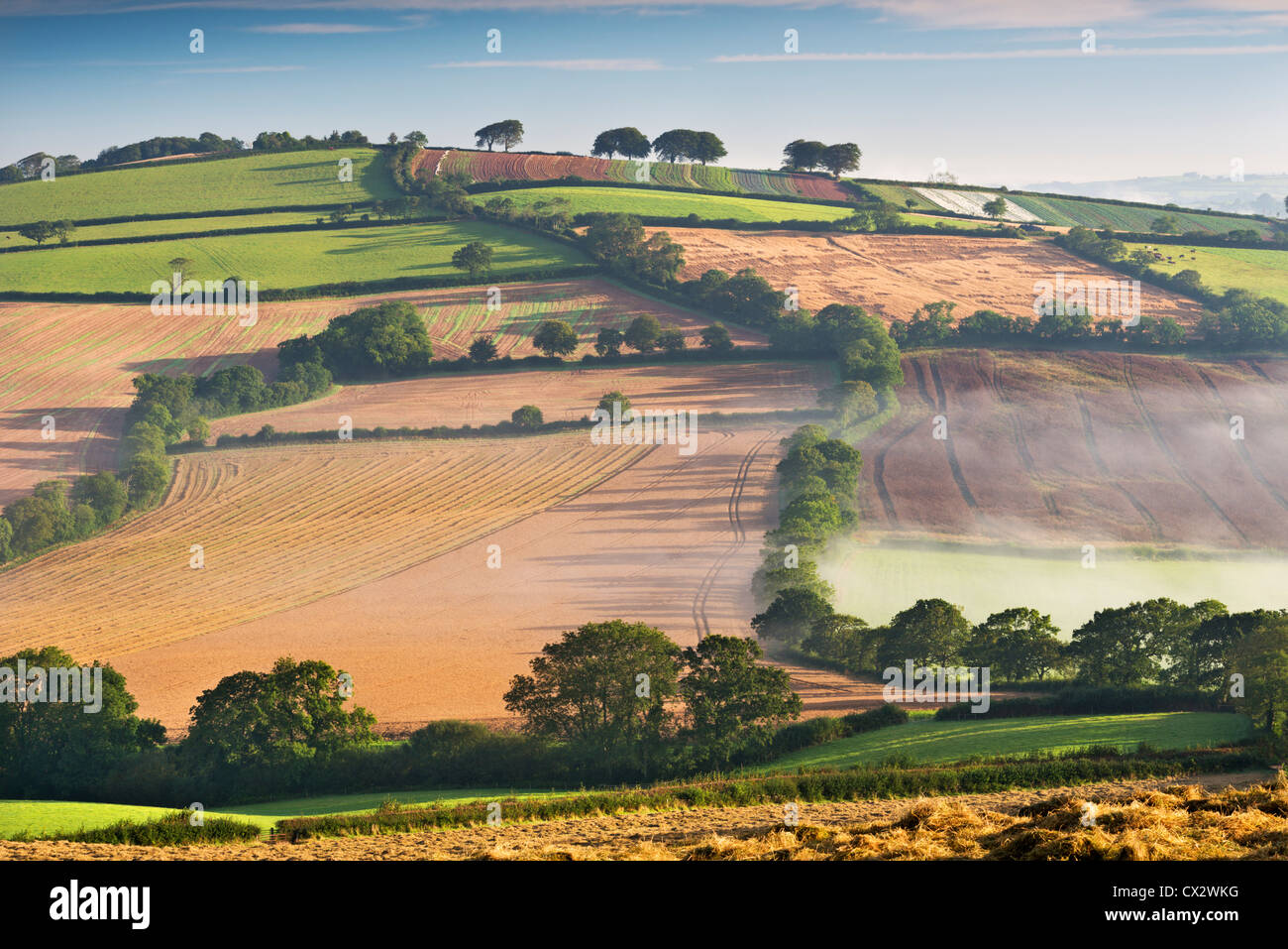 Rolling countryside on a misty morning, mid Devon, England. Autumn (September) 2012. - Stock Image