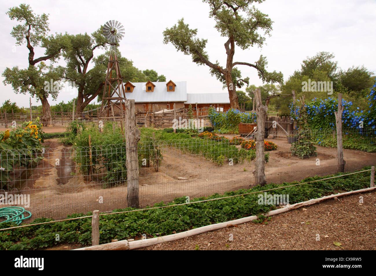 crops at heritage farm botanical garden gardens albuquerque alb alq ...
