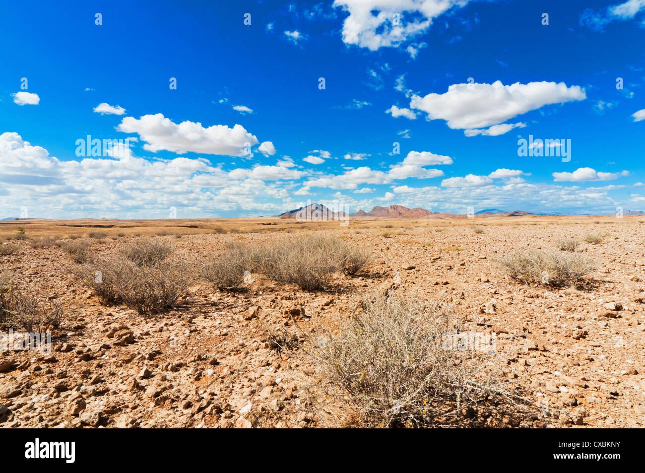 Namib desert, Namibia, Africa - Stock Image