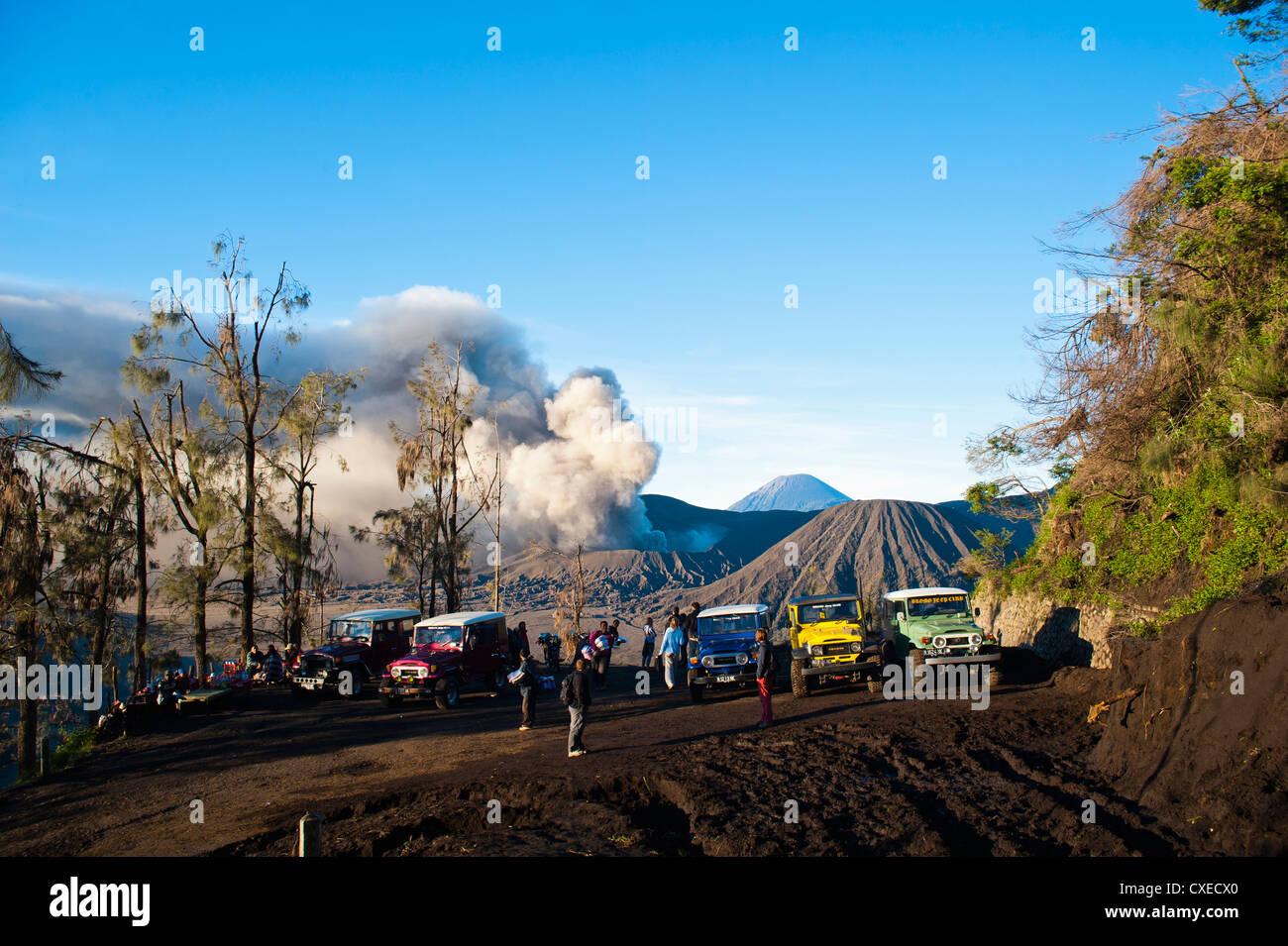 Tourist jeep tour at Mount Bromo, Bromo Tengger Semeru National Park, East Java, Indonesia, Southeast Asia, Asia - Stock Image