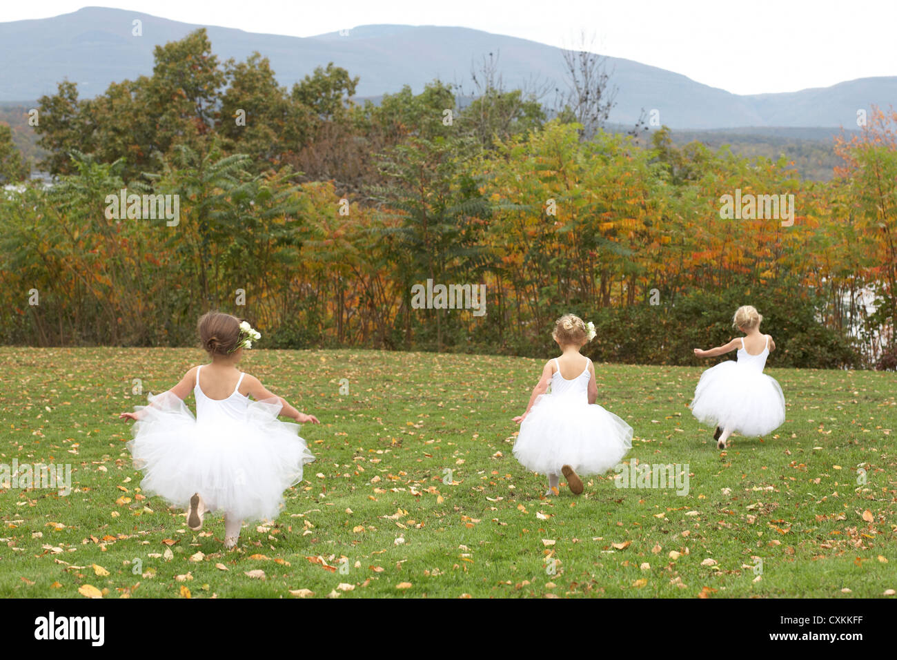 girls running in ballet costumes in a field - Stock Image