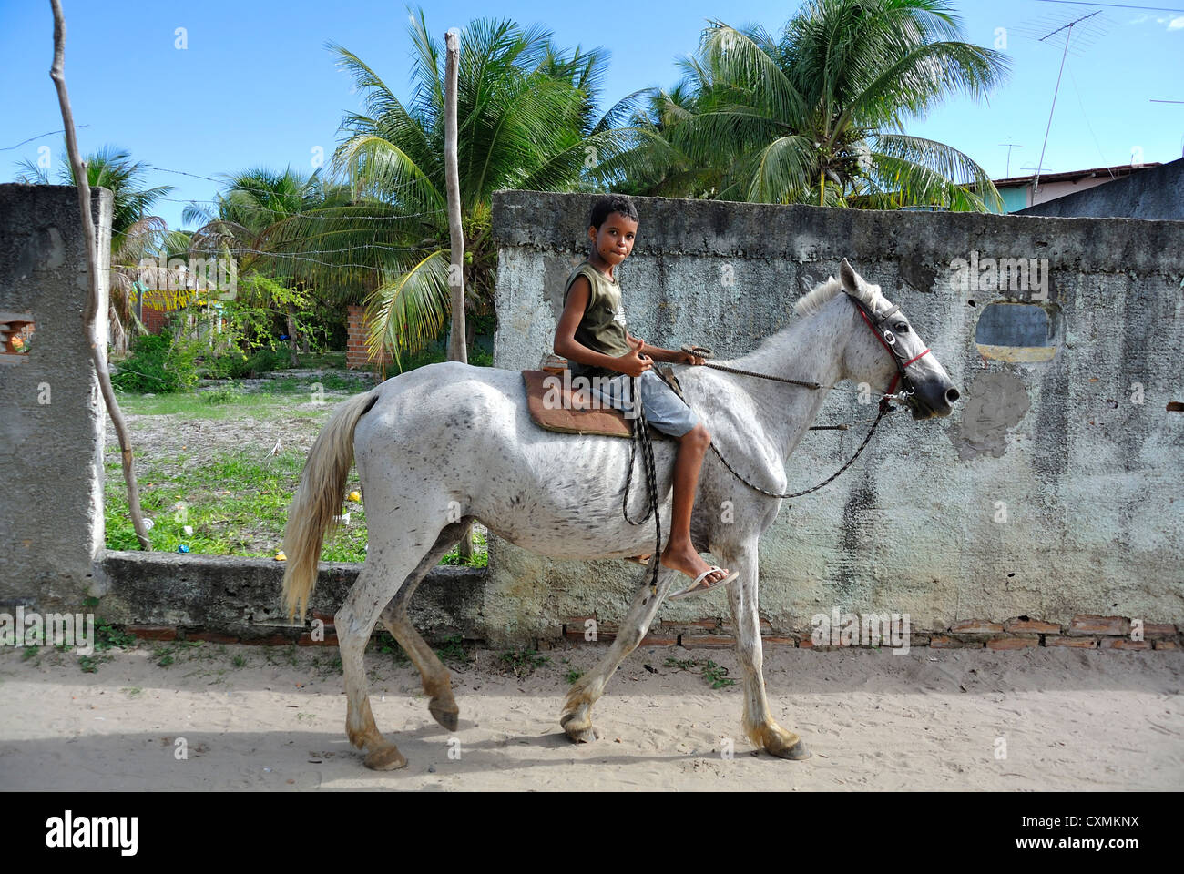 Morro de Sao Paulo, Bahia, Brazil, South America, Brazilian boy riding on a horse Stock Photo