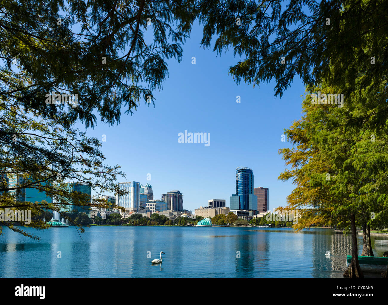 The downtown city skyline from Lake Eola Park, Orlando, Central Florida, USA - Stock Image