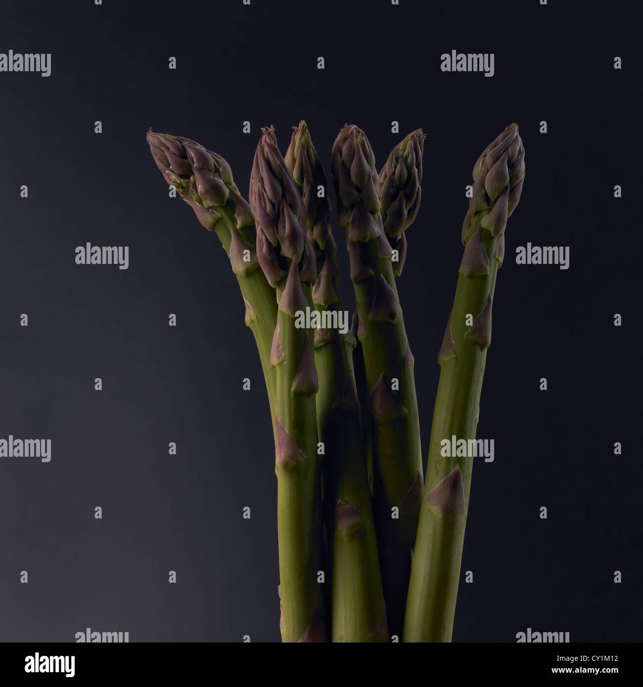 asparagus-spears-on-dark-background-CY1M