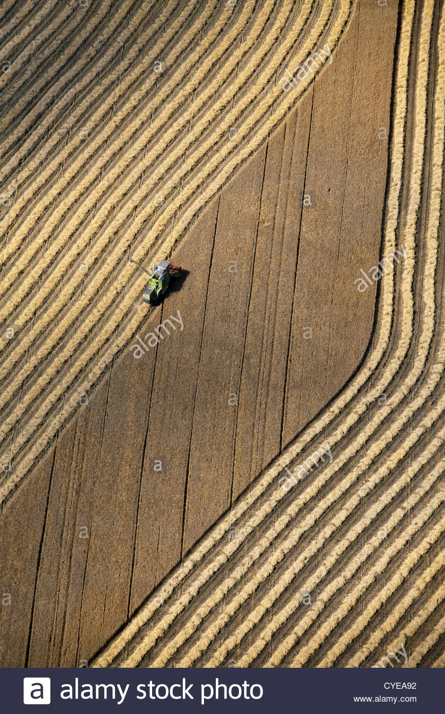 The Netherlands, Donderen, Combine harvester harvesting wheat field. Aerial. - Stock Image
