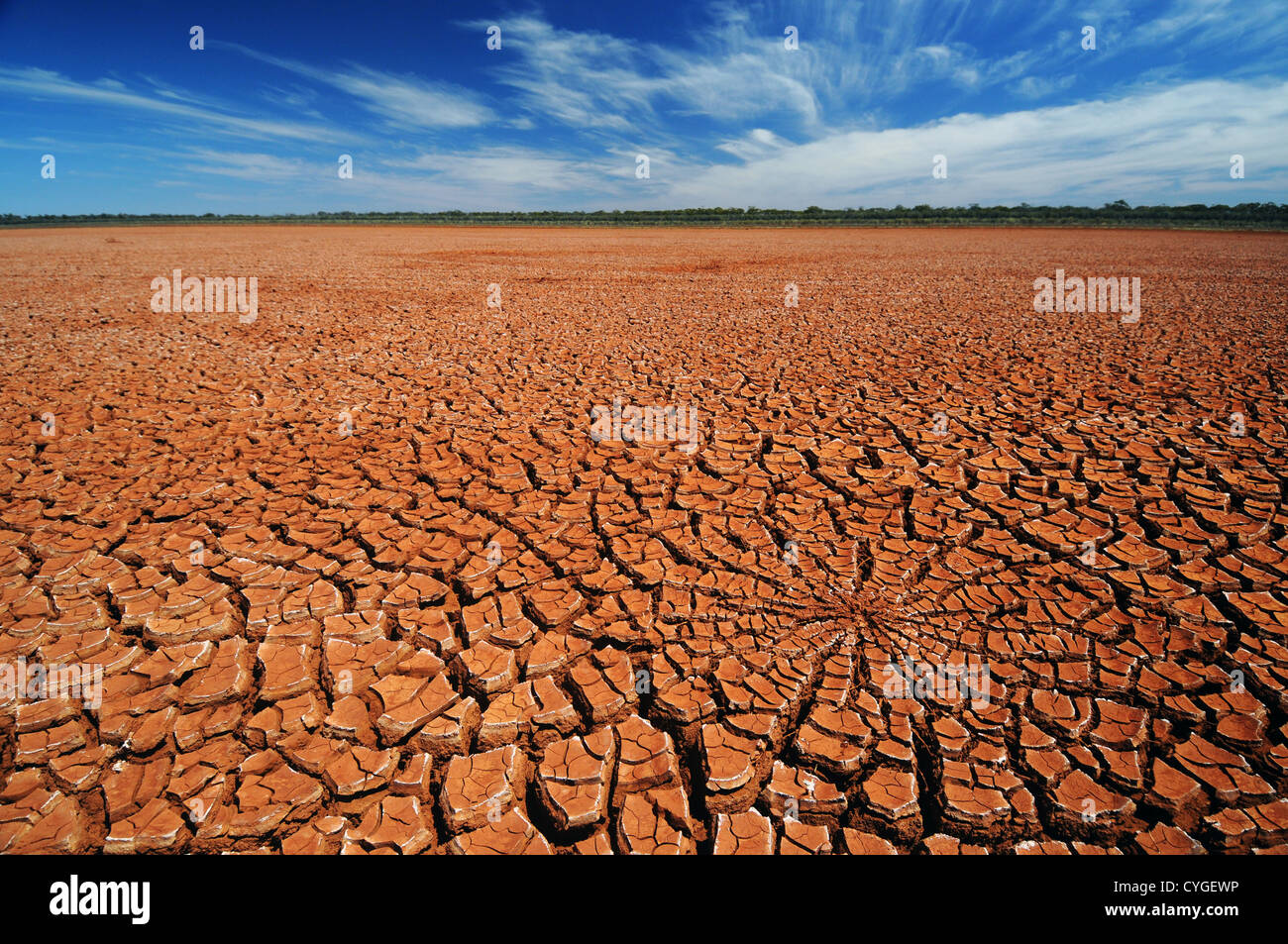 Cracked mud on dry lakebed of Rowles Lagoon, Credo Station, Western Australia Stock Photo