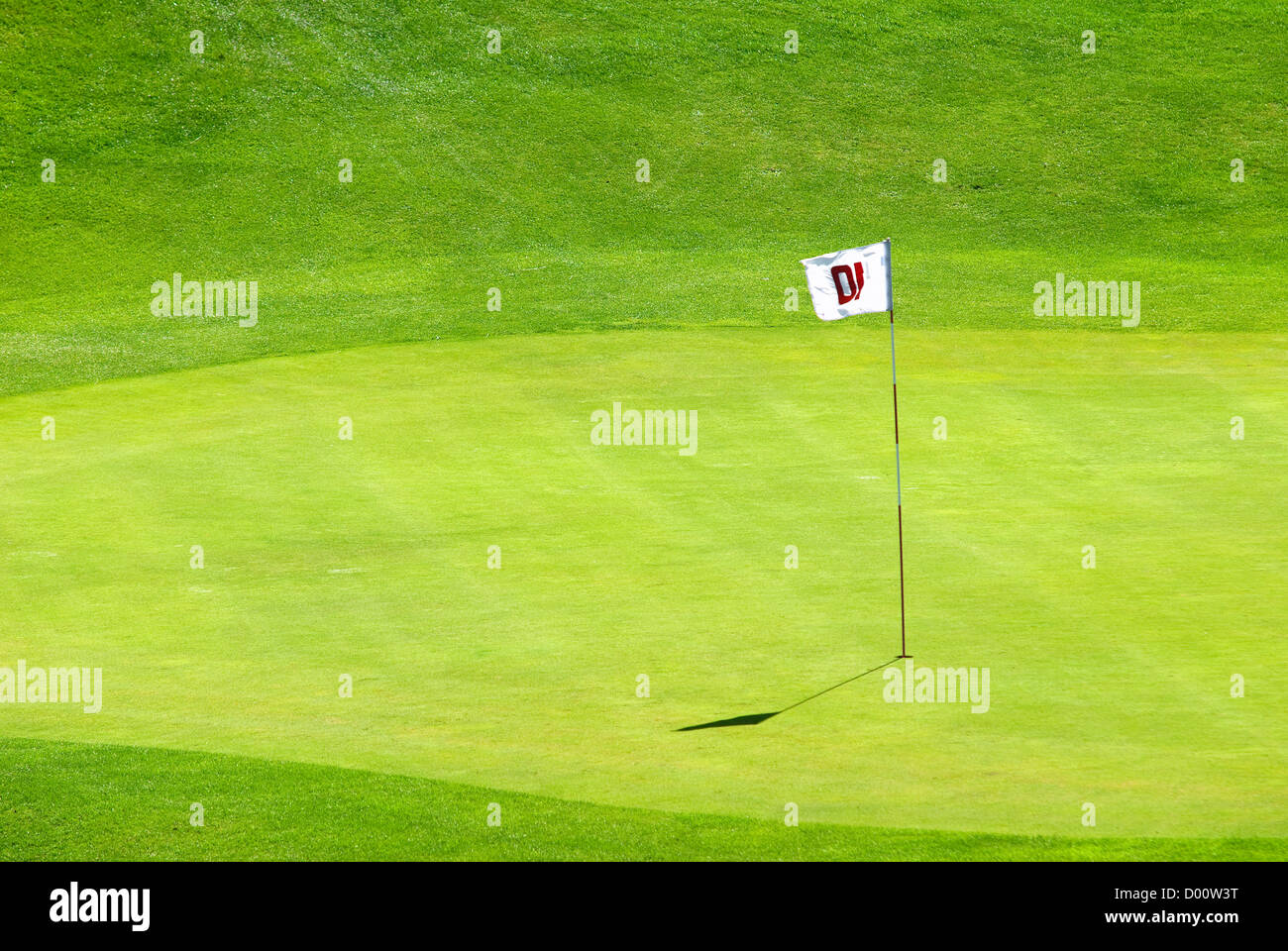 green, golf course - Stock Image