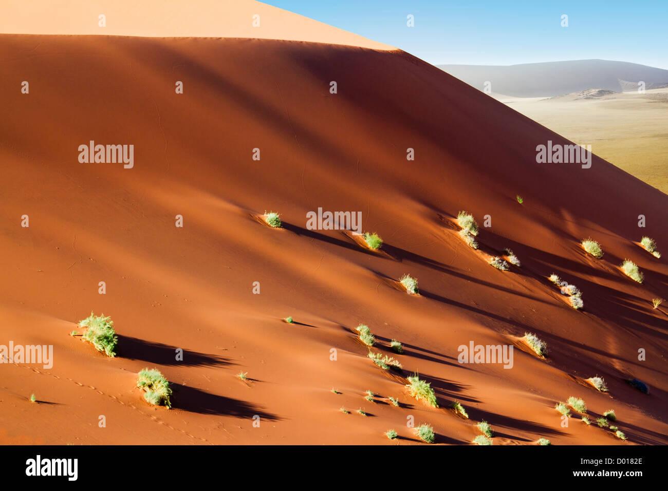 Wandering dune of Sossuvlei in Namibia - Stock Image
