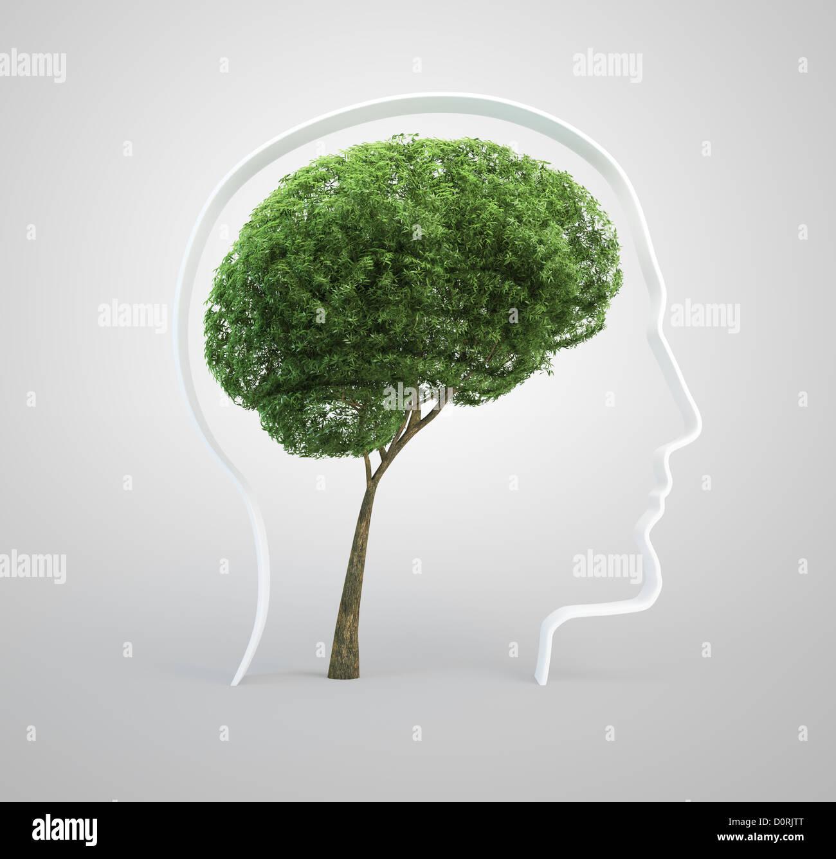 Brain tree - human head - Stock Image
