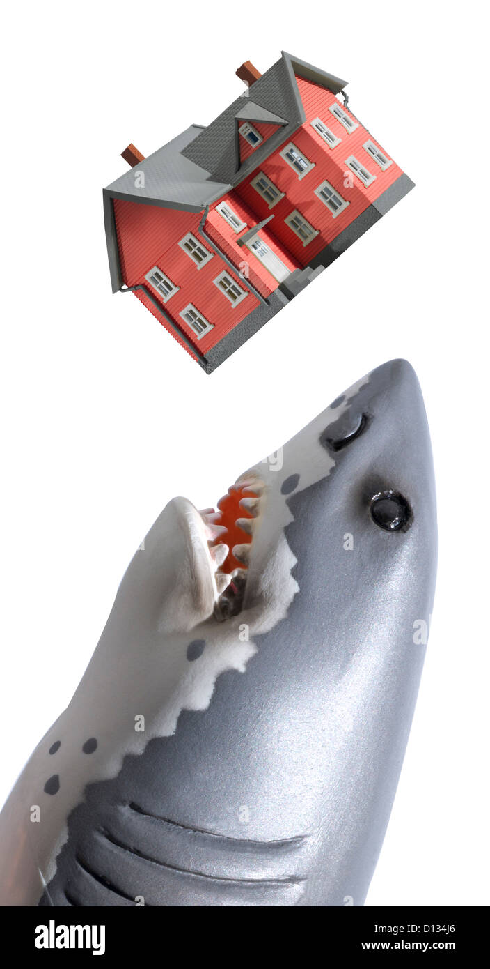 Great white shark about to eat a red house - Stock Image