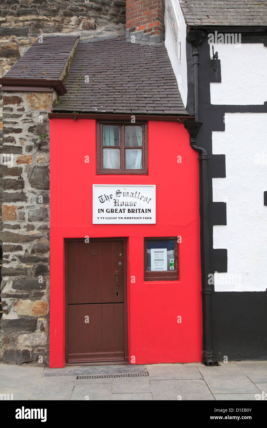 Smallest house in Great Britain, Conwy, North Wales, Wales, United Kingdom, Europe - Stock Image