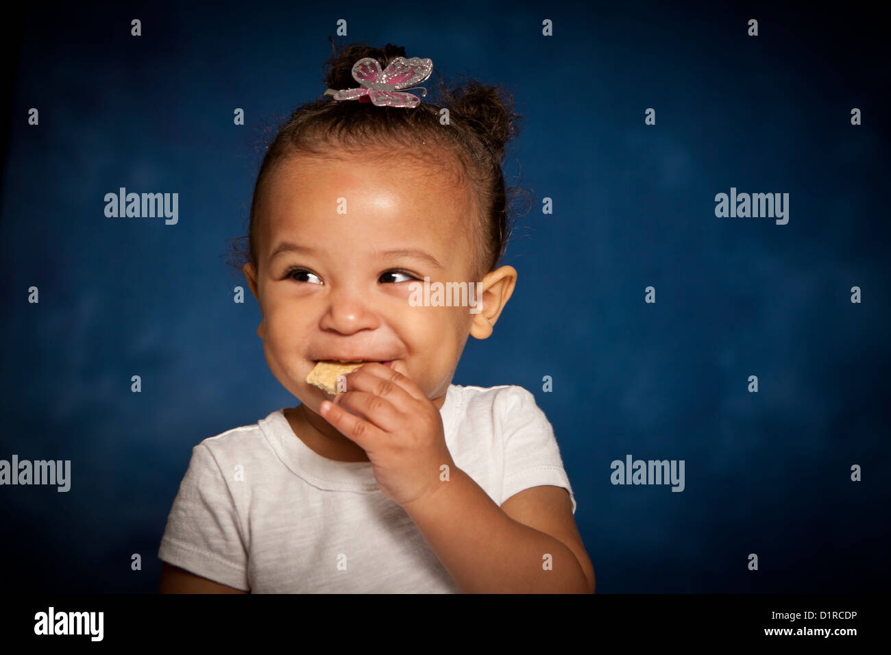 Cute studio portrait of a mixed race toddler girl eating a biscuit with a cheeky smile on her face - Stock Image