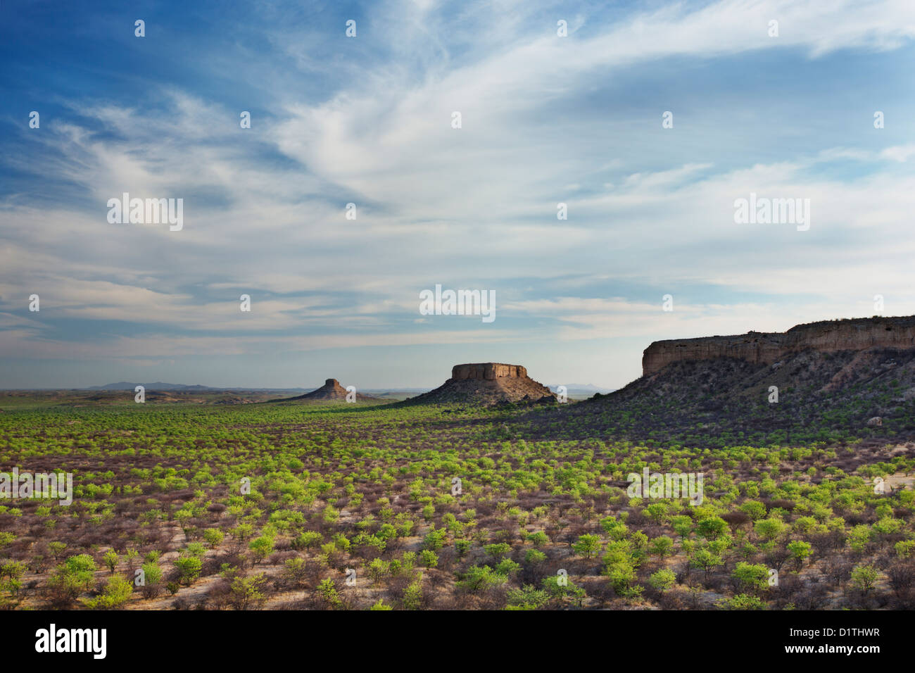 View of Ugab Terraces from Finger Rock in Damaraland in Namibia - Stock Image