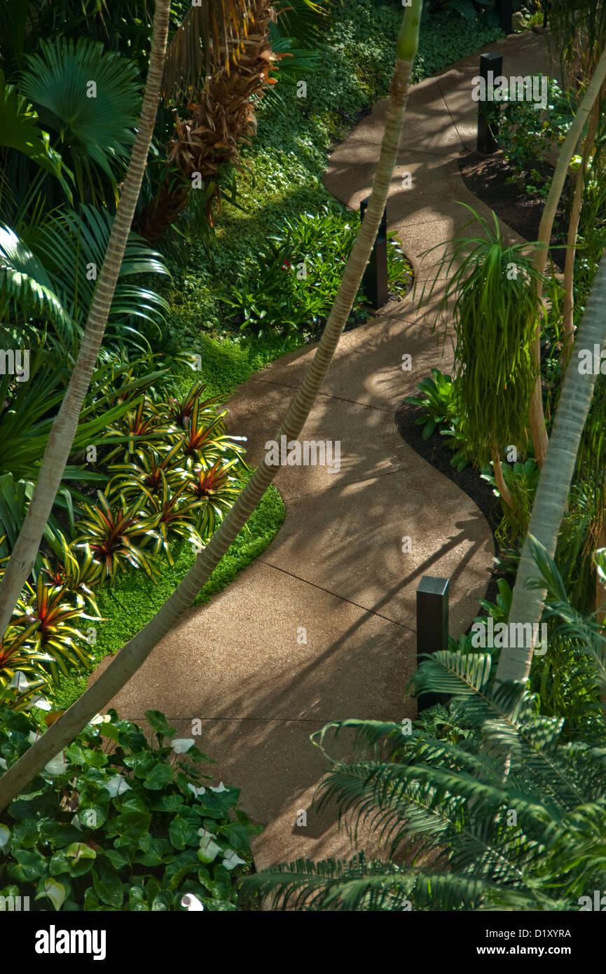 Curved Walking Path Through Tropical Garden Stock Photo: 52838334 ...