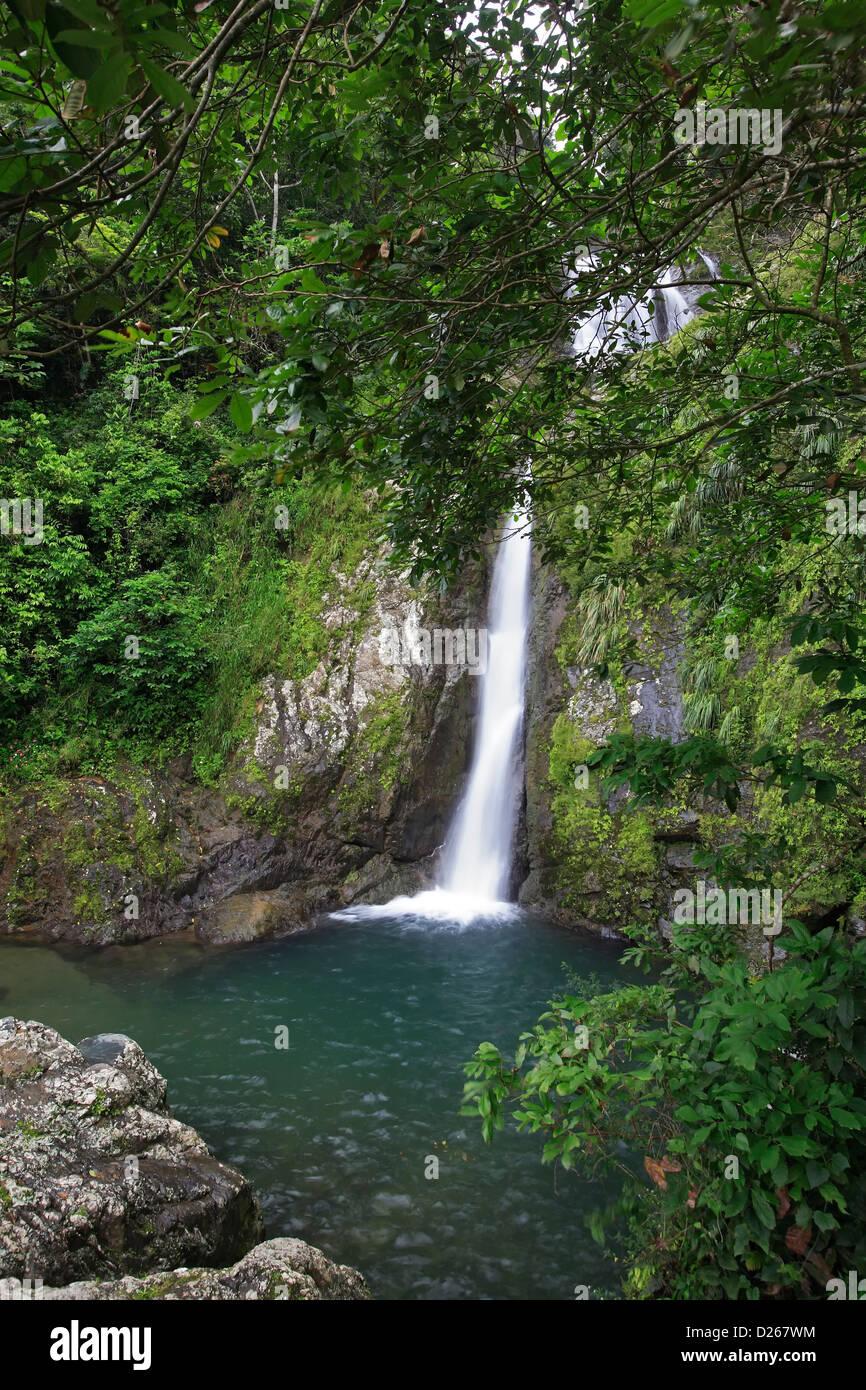 Salto de Dona Juana, (Dona Juana Falls), Toro Negro State Forest, Puerto Rico - Stock Image