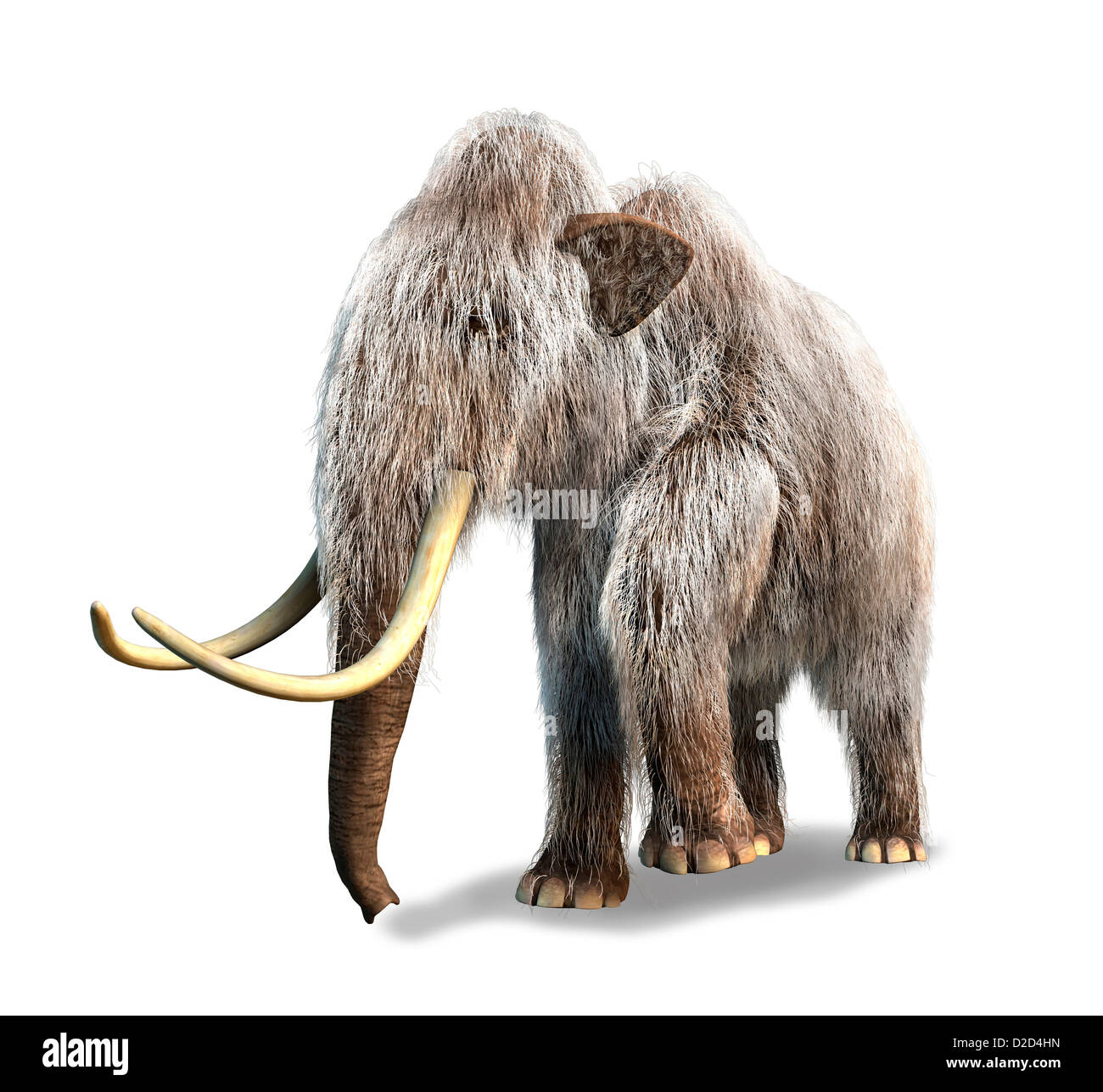 Woolly mammoth Mammuthus primigenius computer artwork - Stock Image