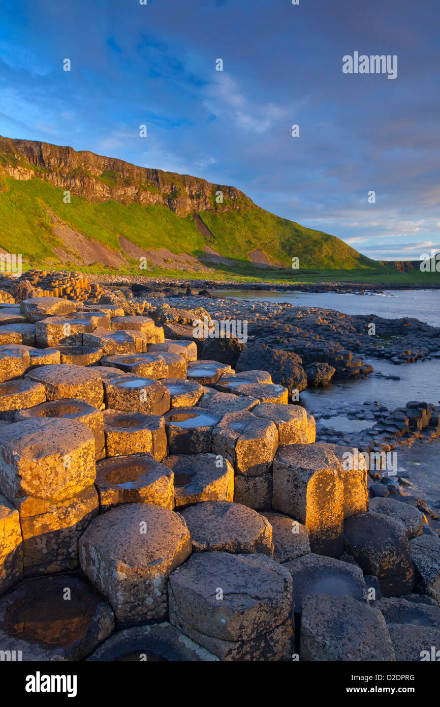 Evening light on the Giant's Causeway, County Antrim, Northern Ireland. - Stock Image