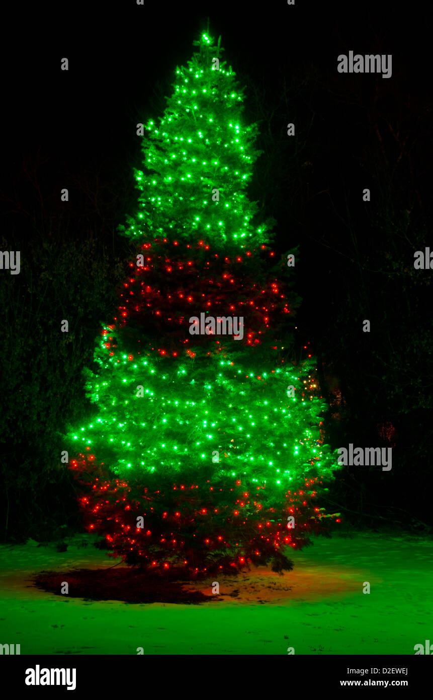 a beautiful outdoor christmas tree is lit up on a snowy winter night casting green light on the snow at its base
