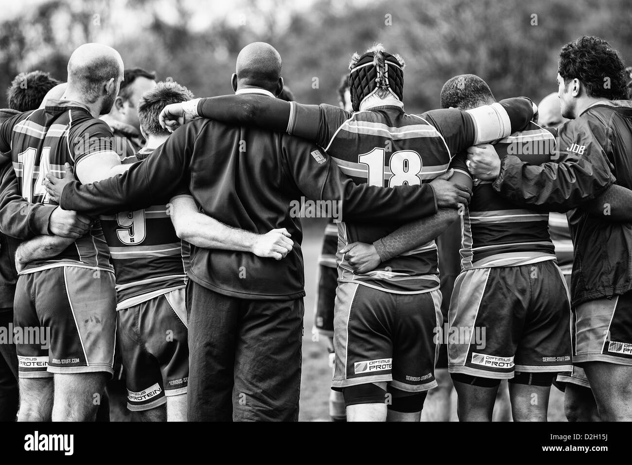 A team of rugby players huddle after a match - Stock Image