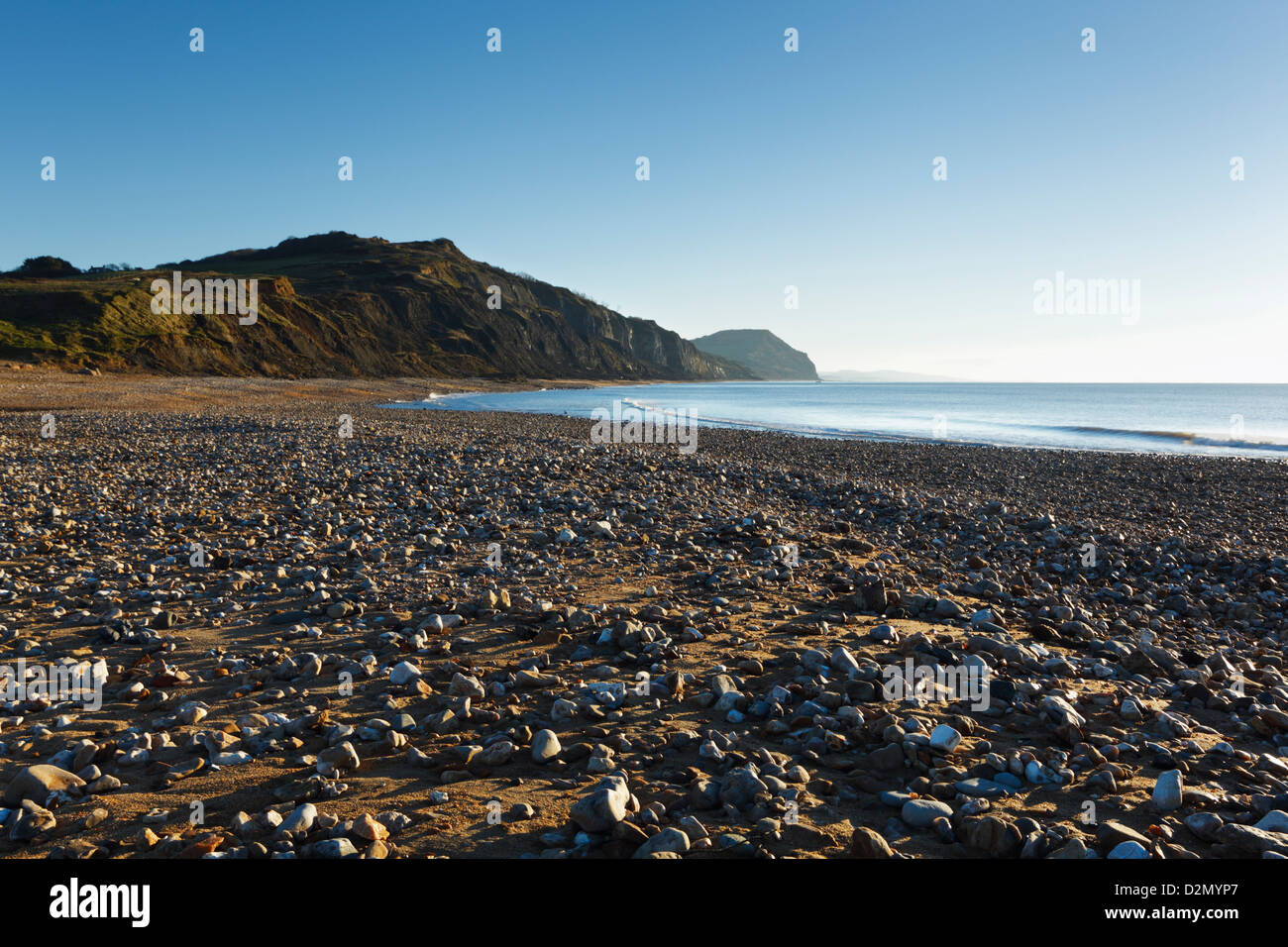 Fossil Rich cliffs at Charmouth Beach. Jurassic Coast World Heritage Site. Dorset. England. UK. Stock Photo